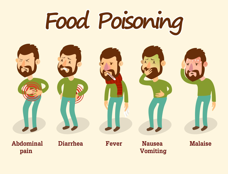 Dog Food Contamination